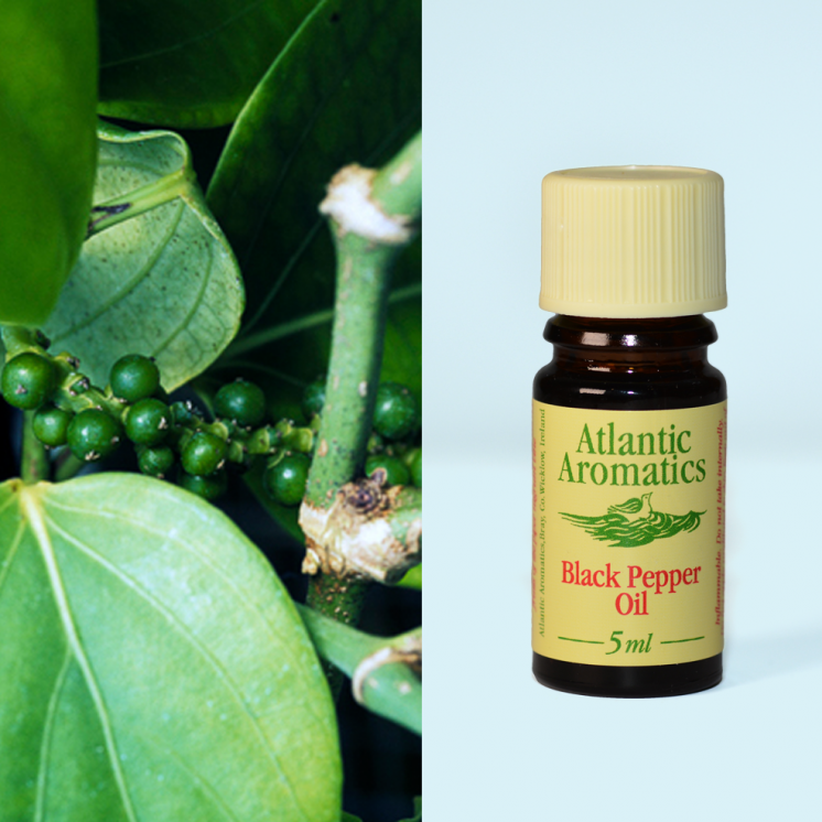 Atlantic Aromatics - Black Pepper Organic 3x5ml