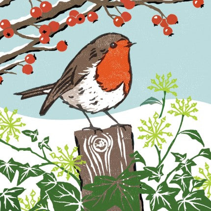Robin Redbreast - Christmas Cards