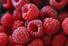 raspberry ketone reviews for weight loss