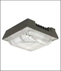 LED Canopy Series - 48W LED Canopy Lamp, 100-277 / 347V DLC Qualified