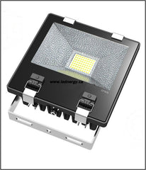 Floodlight Series -  80W LED Floodlight, 100-277 / 347V DLC Qualified