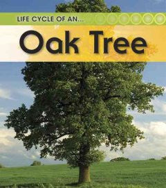 Oak Tree (2nd Edition)