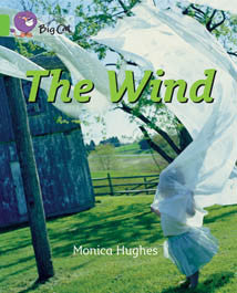 The Wind (Big Cat Series) - PL-7063