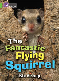 The Fantastic Flying Squirrel - PL-7068