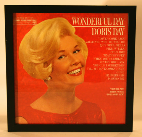 Vintage Framed Doris Day Album