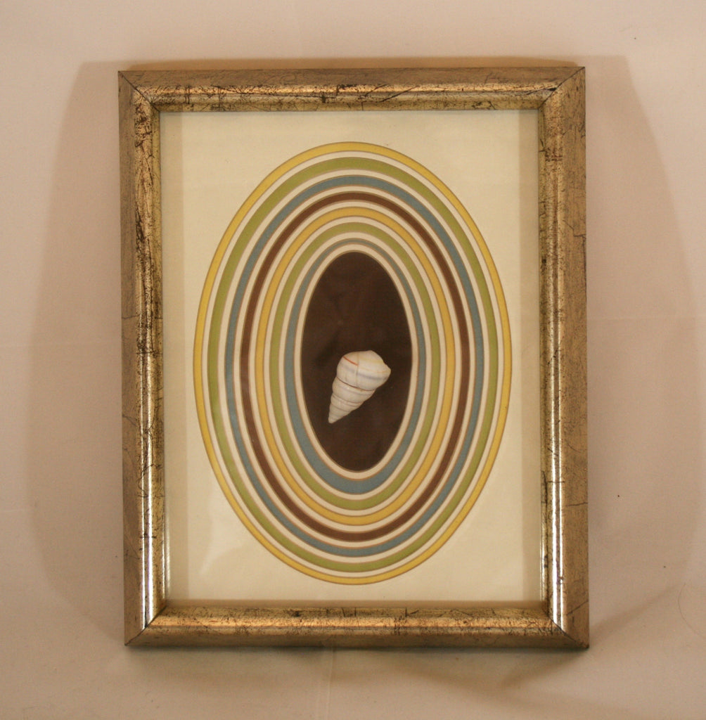 1970s Vintage Framed Sea Shell - Vintage Swag Chics