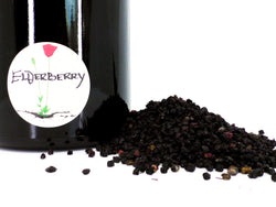 Elderberry, Black (Organic)