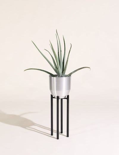 "8"" Spun Planter in Aluminum"