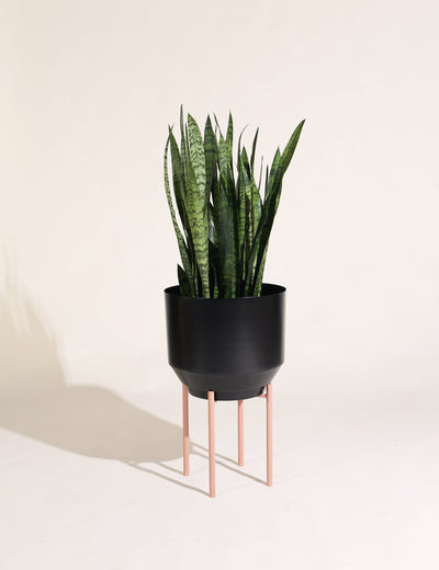"16"" Spun Planter in Black"