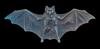 Black Gothic Bat Patinated to a rich black