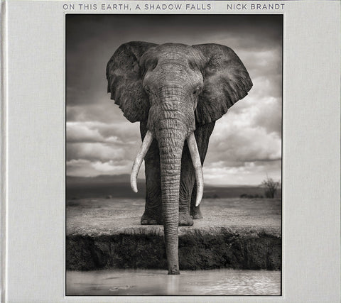 On This Earth, A Shadow Falls signed and dedicated copy by Nick Brandt