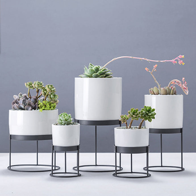 Pots and planters to furnish your room with fresh greenery or flowers. Varieties of decorative indoor planters & plant pots to find the perfect planter for your style from tabletop pots to floor standing, hanging baskets and more.