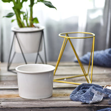 Load image into Gallery viewer, Pots and planters to furnish your room with fresh greenery or flowers. Varieties of decorative indoor planters & plant pots to find the perfect planter for your style from tabletop pots to floor standing, hanging baskets and more.