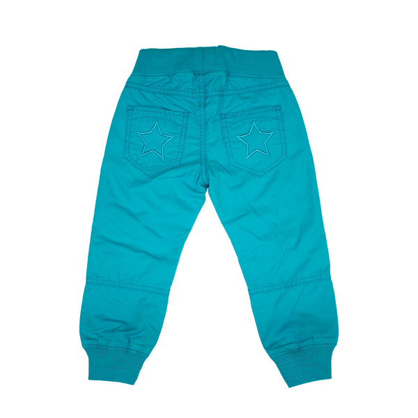 Reef Blue Canvas Pants