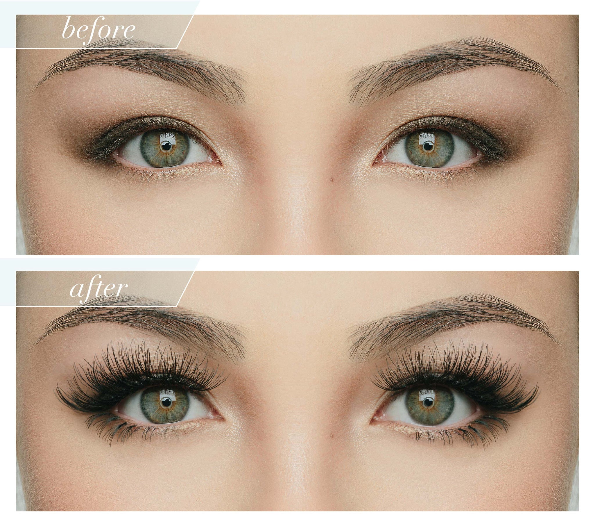Le Petit Individual Lash Collection Set House Of Lashes