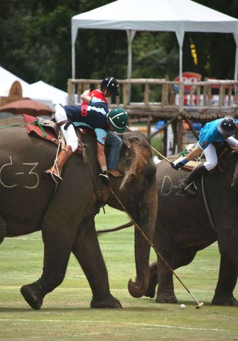 Ed Story (in the green hat) leans down to smack a polo ball during an elephant polo tournament in southeast Asia.
