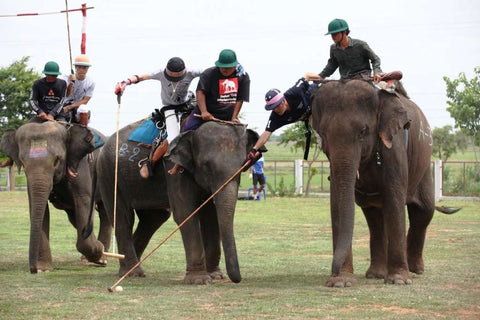 Polo action during the 2016 Elephant Story Invitational Tournament in Thailand in June.