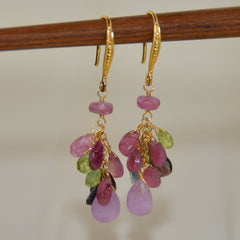 Mixed Gems on Gold Hook Earrings