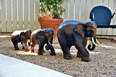 Left to Right:  15 inch, 18 inch & 21 inch Hand Carved Wood Elephants