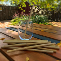 Reusable Bamboo Drinking Straws (set of 10)