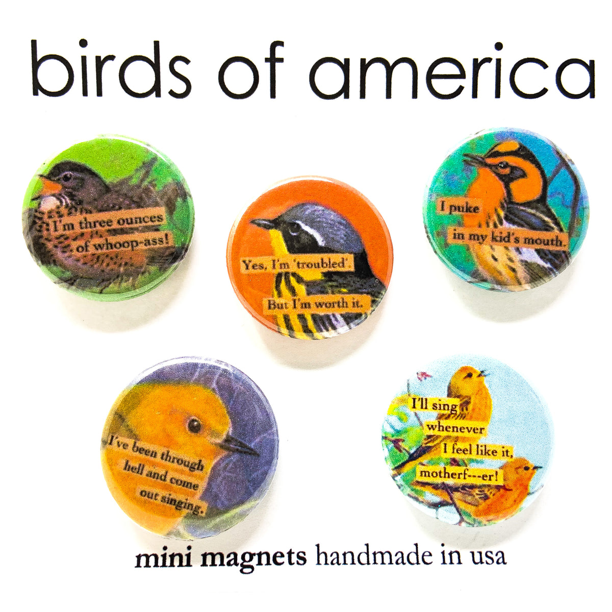 birds of america mini magnet set