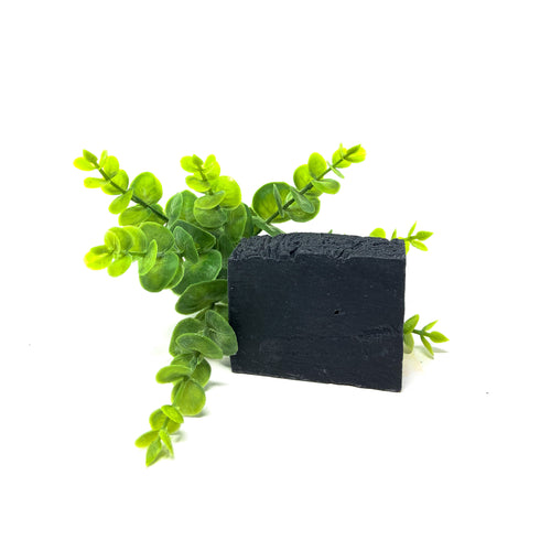 Charcoal Detox Eco Suds Cleansing Bar