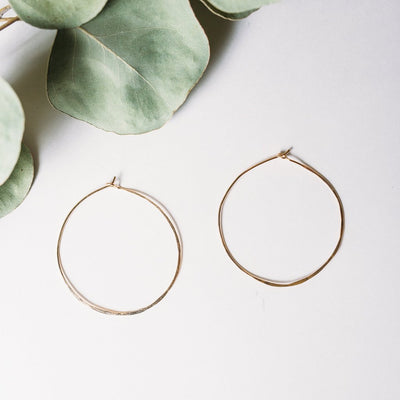 Catch Circle Hoops - XS