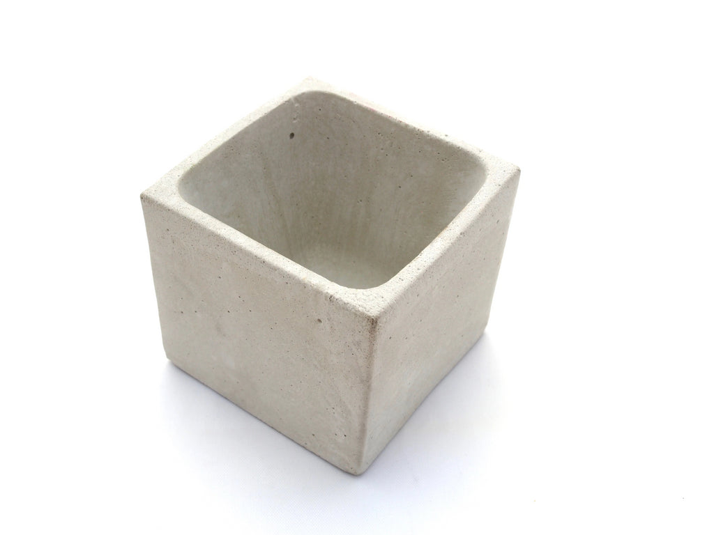 Bring Nature inside small concrete square planter, top view, modern home decor