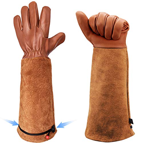 Rose Gardening Gloves