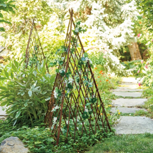 Load image into Gallery viewer, Willow Garden Pyramid Trellis