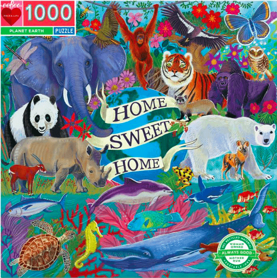 eeBoo 12 Plus 1000 Pc Puzzle - Planet Earth
