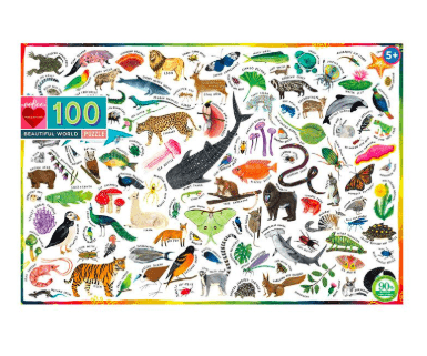 eeBoo 5 Plus 100 Pc Puzzle - Beautiful World