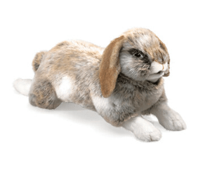 Folkmanis 3 Plus Hand Puppet - Animal - Holland Lop Rabbit