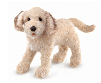 Folkmanis 3 Plus Hand Puppet - Dog - Labradoodle