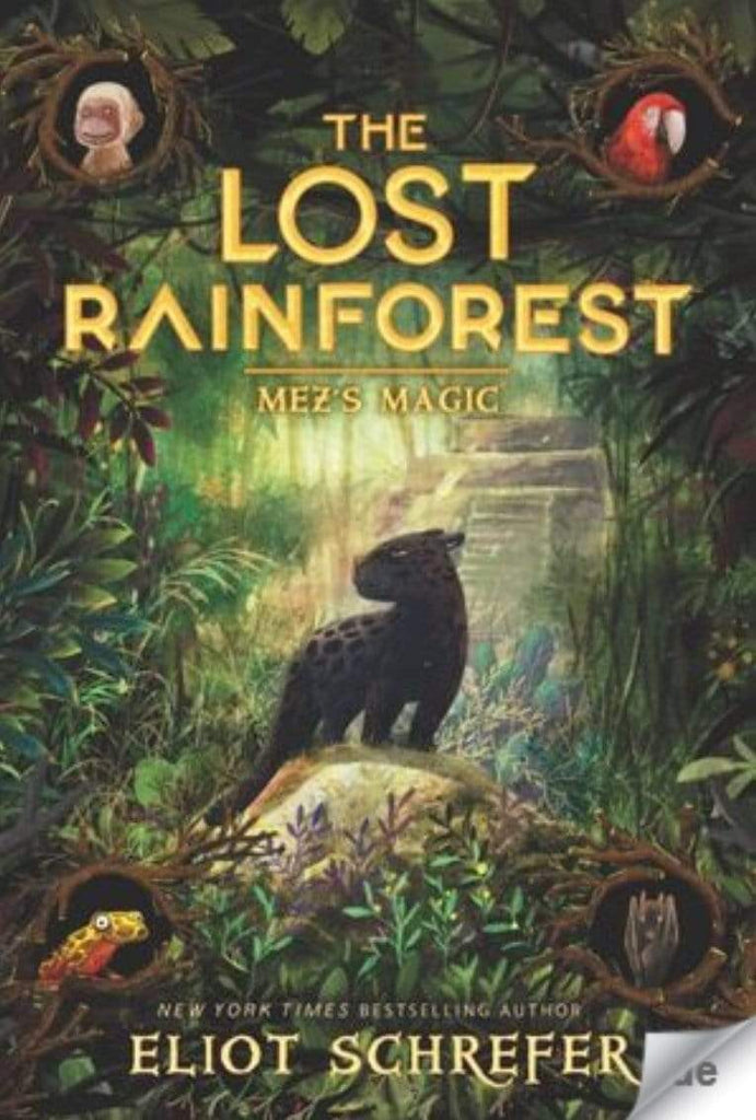 Harper Collins Child Fiction 8 Plus The Lost Rainforest: No 1, Mez's Magic