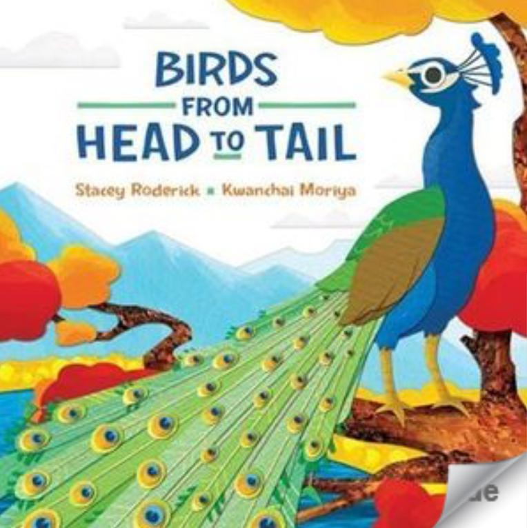 Kids Can Press Child NF 3 Plus Birds From Head To Tail - Stacey Roderick