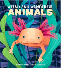 White Star Kids Child NF 7 Plus Weird and Wonderful Animals - Cristina Banfi