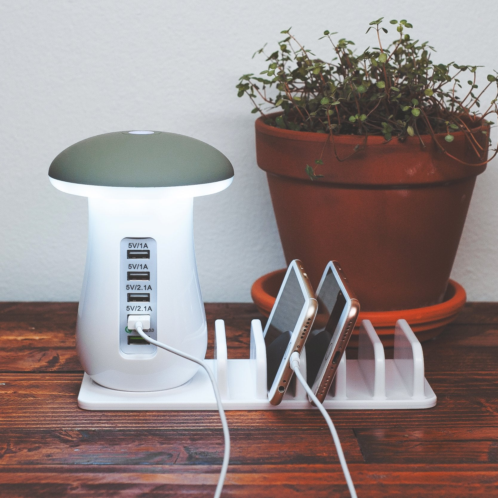 Multi-Charging Station