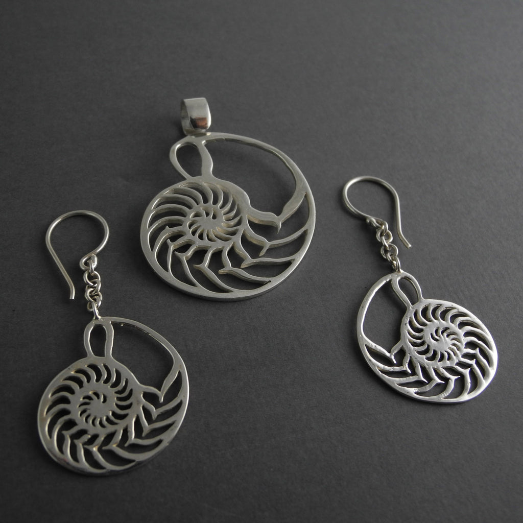 Ammonite cut out collection