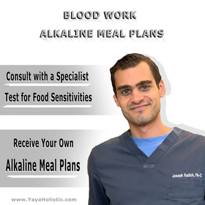 Custom Alkaline Meal Plan & Holistic Assessment (with BLOOD WORK)