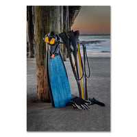 Santa Cruz Art Print donates to SeaLagacy, from sales of home decor wall art and iPhone & Galaxy phone cases