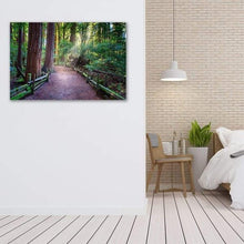 Load image into Gallery viewer, A Light in the Redwoods - Bedroom Wall Art Print