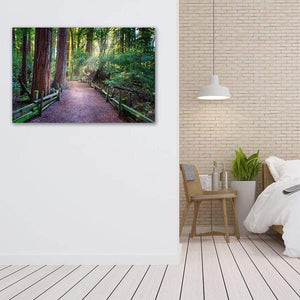 A Light in the Redwoods - Bedroom Wall Art Print