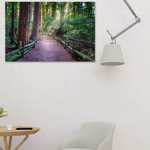 Load image into Gallery viewer, A Light In The Redwods - Canvas Print - Santa Cruz Art Prints