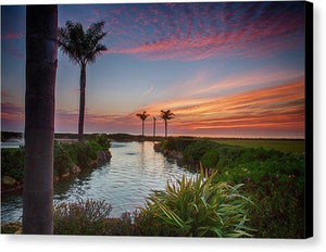Sunset In The Palms - Canvas Print - Santa Cruz Art Prints