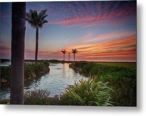 Sunset in the Palms - Metal Wall Art Print