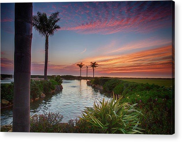 Sunset In The Palms - Acrylic Print - Santa Cruz Art Prints