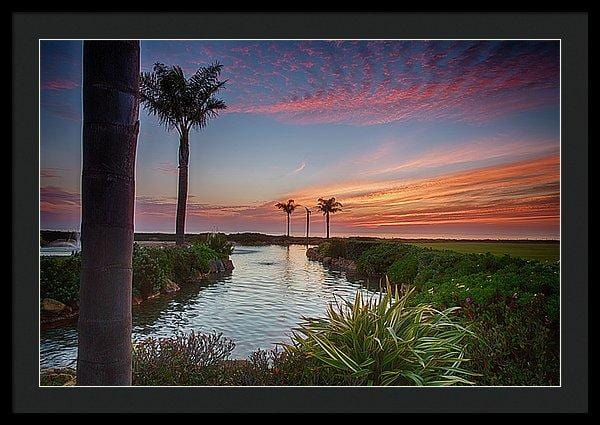 Sunset In The Palms - Framed Print - Santa Cruz Art Prints
