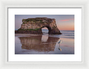 White Bird - Framed Print - Santa Cruz Art Prints
