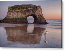 Load image into Gallery viewer, White Bird - Acrylic Print - Santa Cruz Art Prints